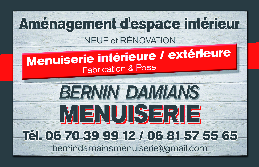 carte de visite bernin damians-01